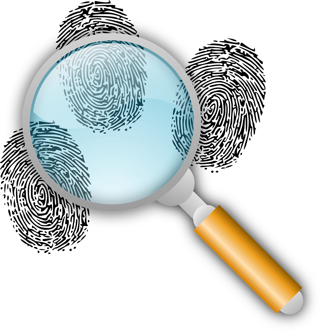, Why Are Private Detectives Hired in Bangalore