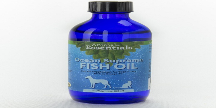 Are Fish Oil Supplements For Cats Effective?