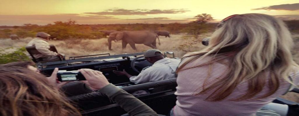 Guided tour operators make your experience of a great African safari unique and exotic
