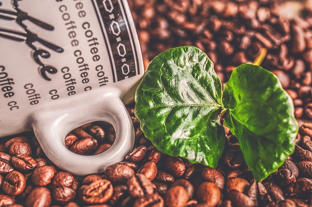 Green coffee beans: Not Just Beverage but a Revolution