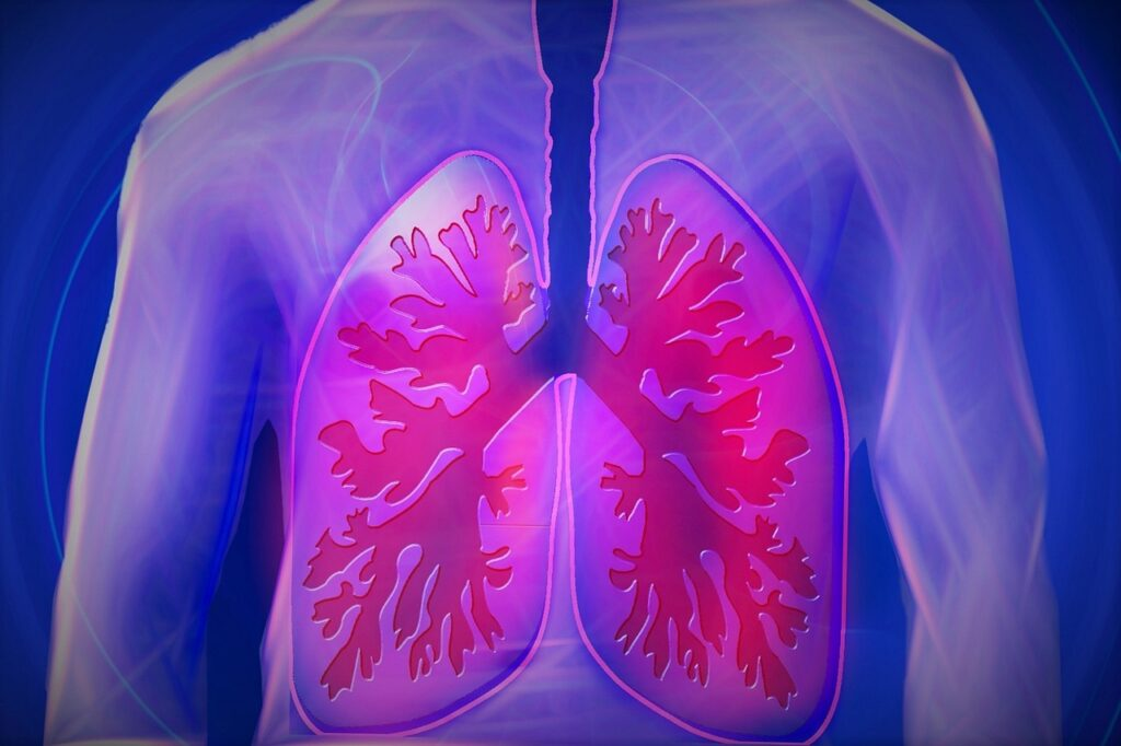Lung Foods — Improve your Lung Health By consuming These Foods