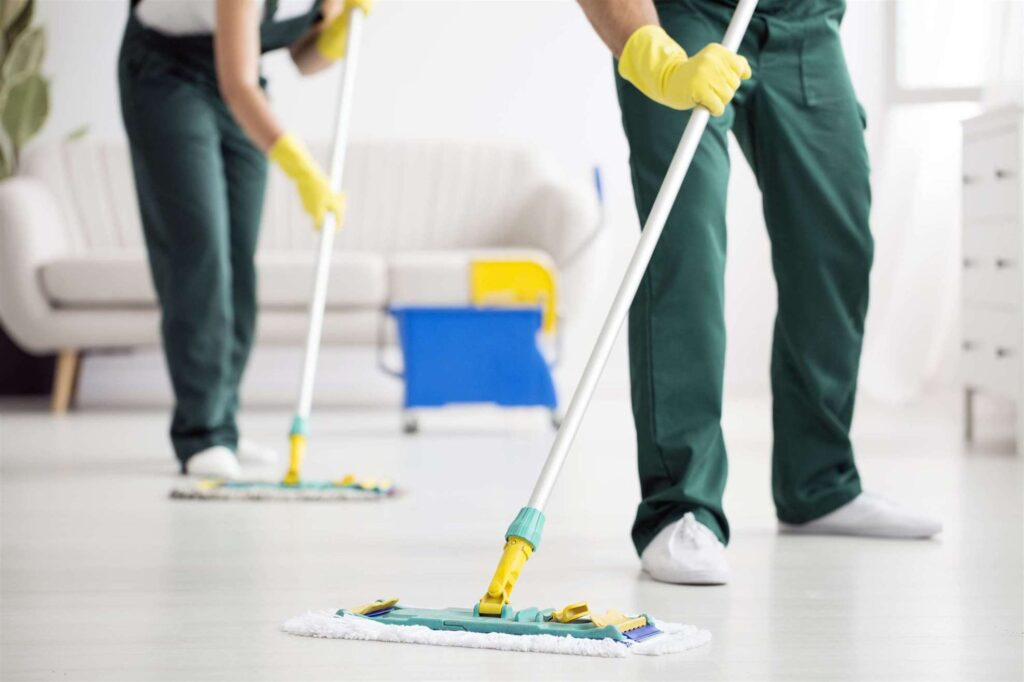 Regular Cleaning & Deep Cleaning