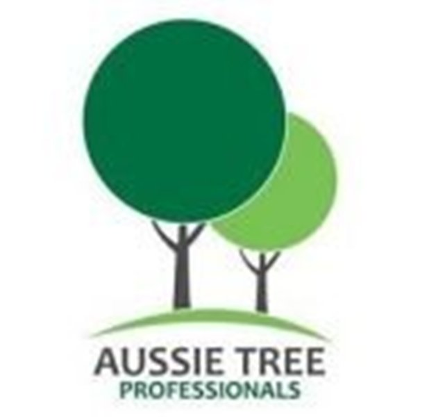 Tree Removal – Two Vital Factors to keep in mind
