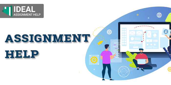 How To Connect With The Right Assignment Help Service Expert?