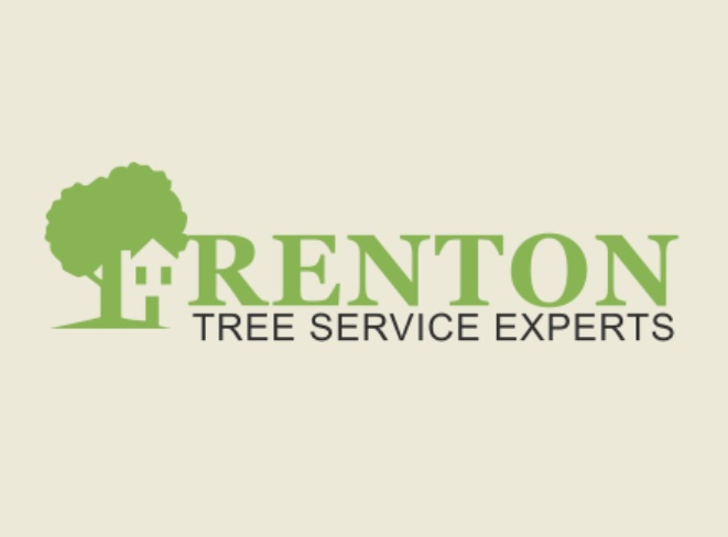 Hiring Tree Service Pros To Handle Your Trees