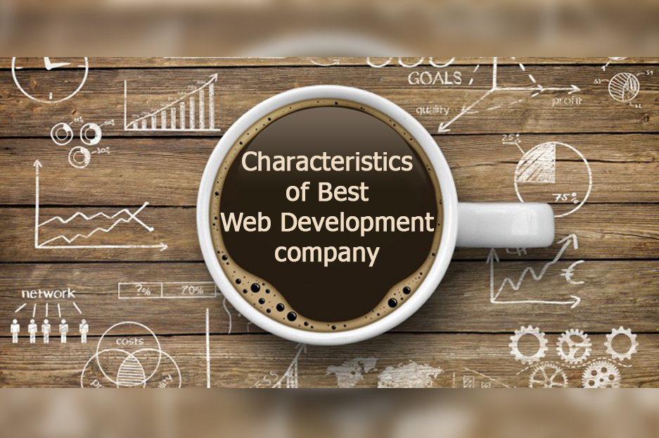 What Qualities Should A Website Development services Company Have?