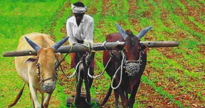 Good news for farmers in Bihar: State Government is running an agricultural campaign; farmers will be benefitted with seed production| Shaan-E-Kisan Troopel.com