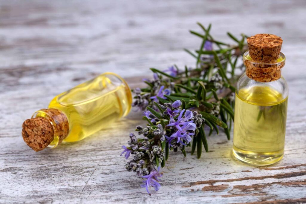 How to Rosemary Oil For Hair Loss – The Right Way to Use This Great Oil