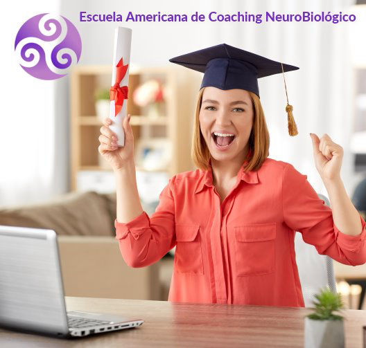 What's Ontological Coaching?