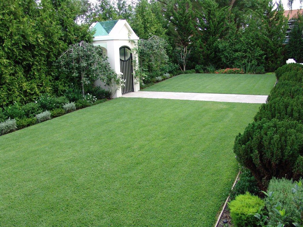 Atlanta sod, Beware Of Atlanta Sod Fall Mistakes When Caring For Lawn