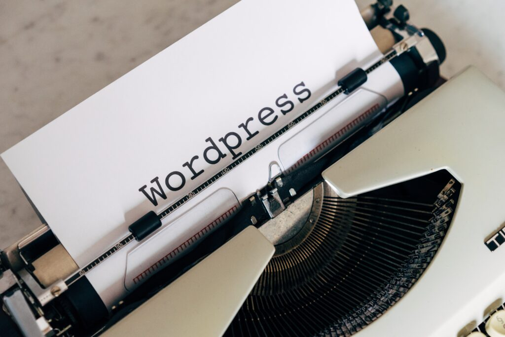 How to select a perfect WordPress Theme for your website?
