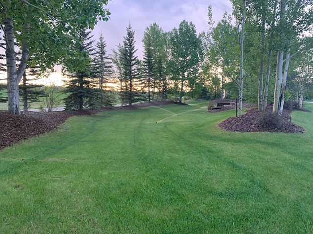 The most beneficial Factors To obtain Specialist Lawn Care Services