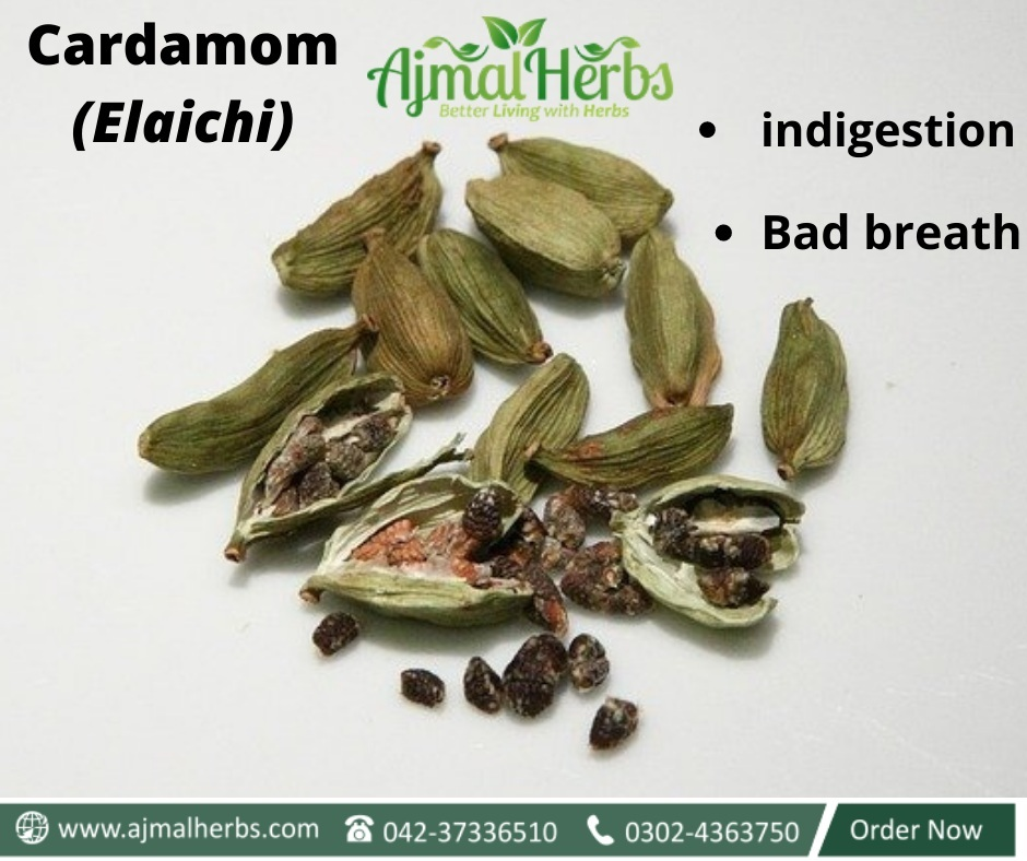 , Cardamom uses for treatment for bad breath