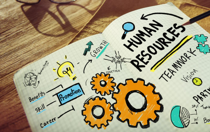 How to Choose an HR Software Vendor for Your Business?
