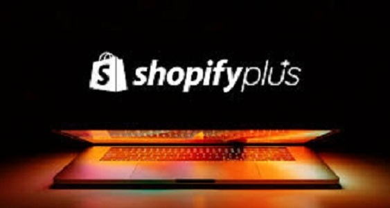 What Services Does a Shopify Plus Partner Offer?