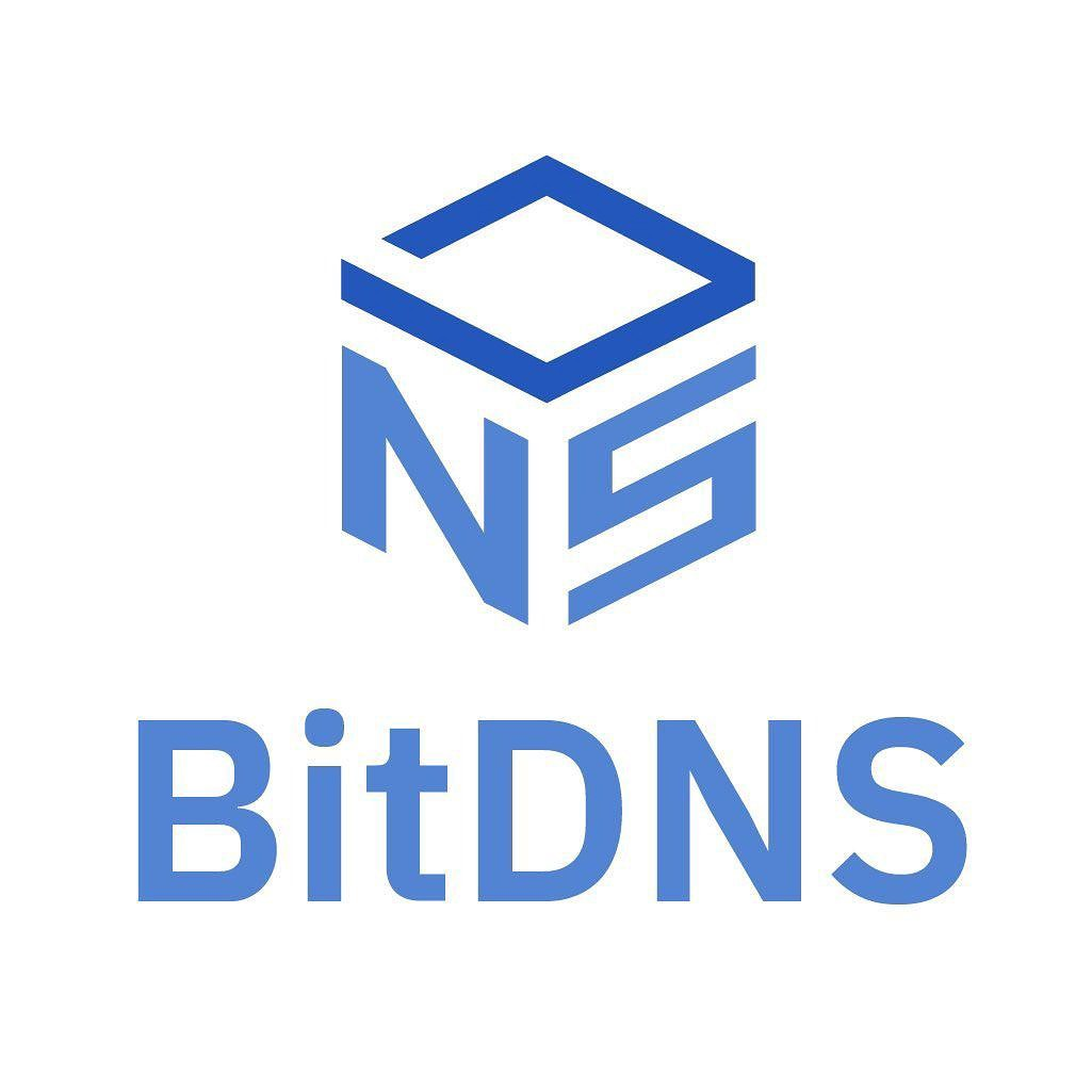 BitDNS protects your privacy