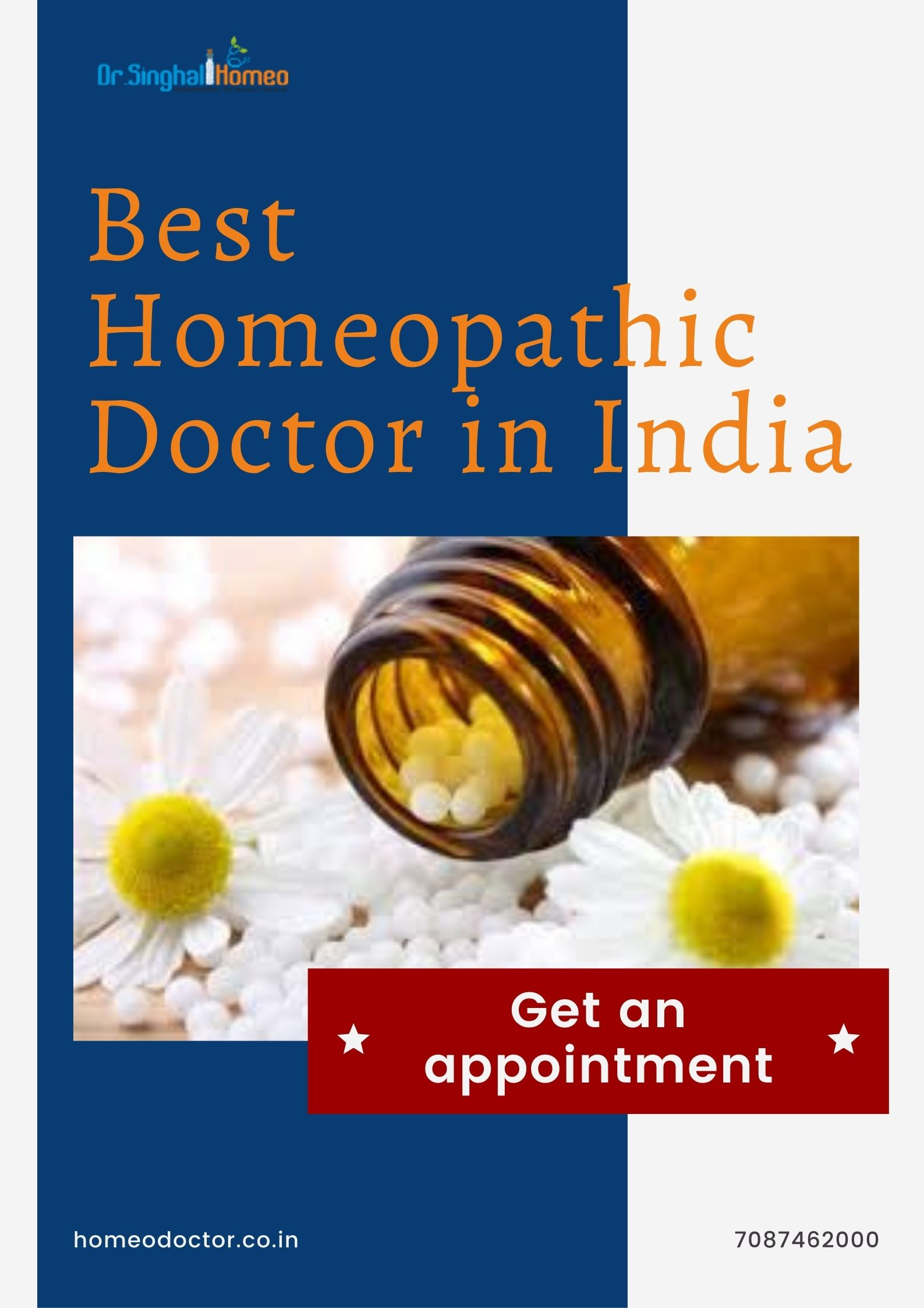 Best Homeopathic Doctor in Mohali, Best Homeopathic Doctor & Treatment in Mohali