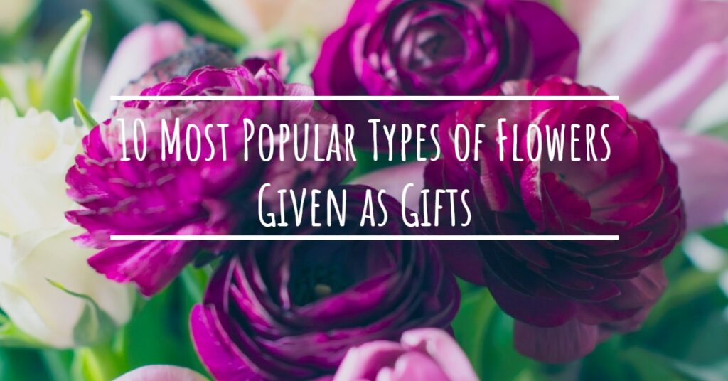 10 Most Popular Types of Flowers Given as Gifts
