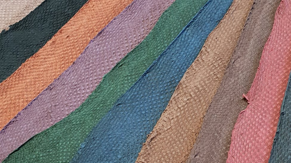 , Future Growth of Global Fish leather Market: Ken Research