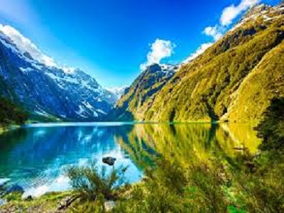 Top 10 things we wager you didn't think about New Zealand