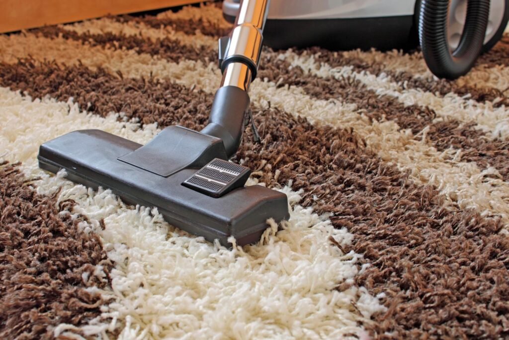 Choosing a professional carpet steam cleaning service