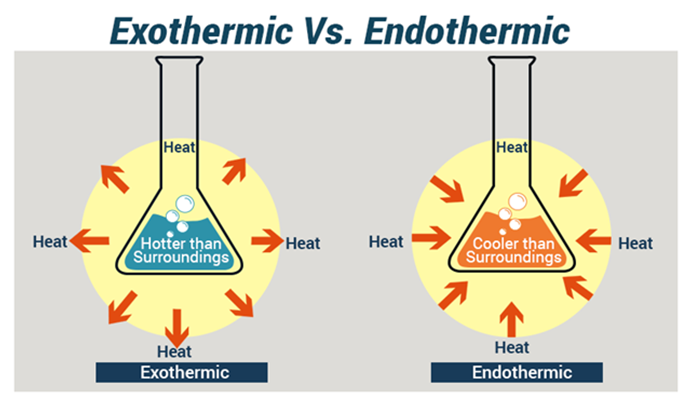 Endothermic Vs Exothermic- Must know the differences
