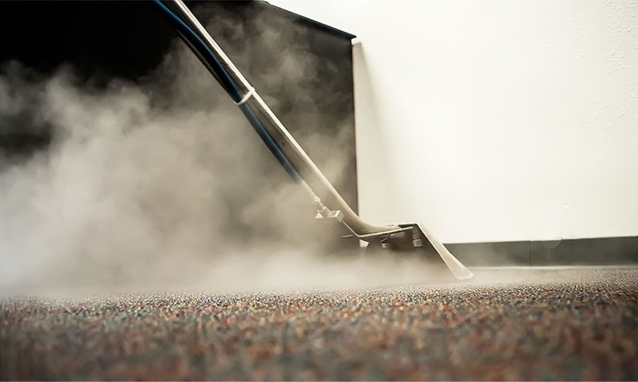How to Steam Clean Carpets and Different Areas in Your Home?