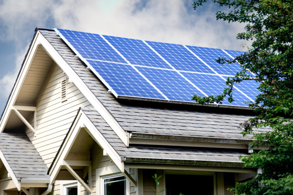 The Different Types of Solar Panels: A Detailed Guide
