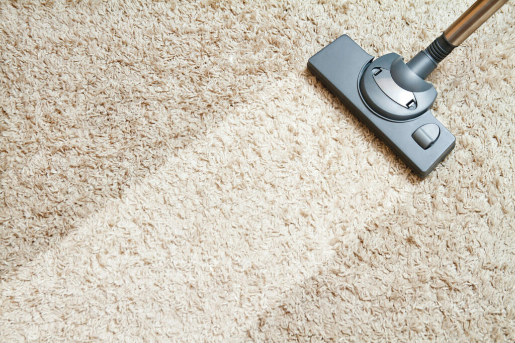When You Need Professionals For Carpet Cleaning