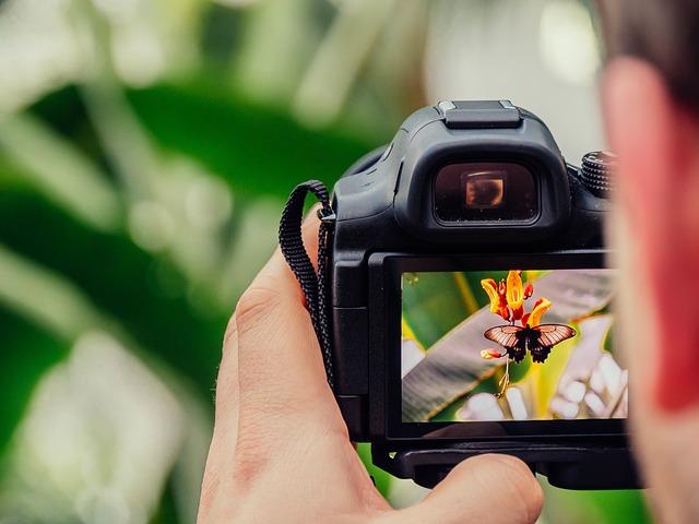 What Precautions Should I Follow Before Buying a Cheap Digital Camera?