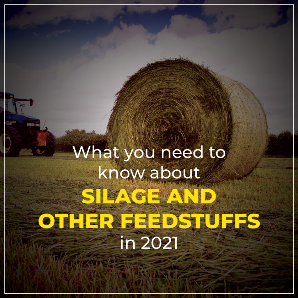 What you need to know about silage and other feed stuffs in 2021
