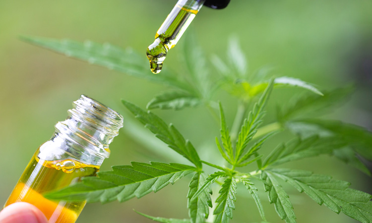 CBD can make your life better
