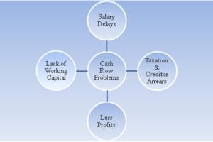 Cash Flow Management Strategy