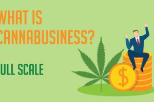 Advertise Your Cannabusiness